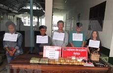 Provincias vietnamita y laosiana neutralizan red de narcotráfico transfronterizo