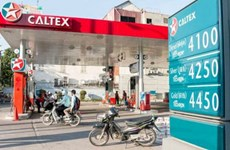 Mantienen pronóstico sobre caída de precios del combustible en Camboya