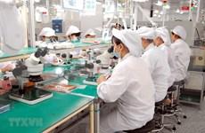 Ciudad Ho Chi Minh por mejorar calidad de trabajadores para programas en el exterior
