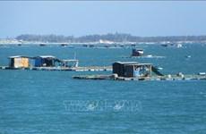 Adoptan plan para estudio de recursos naturales y entorno marítimo de Vietnam