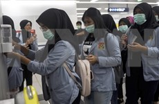 Indonesia podría alcanzar crecimiento de 4,5 por ciento en primer trimestre de 2020