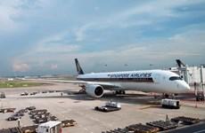 Singapore Airlines reduce su capacidad de vuelo en un 96 por ciento debido al coronavirus