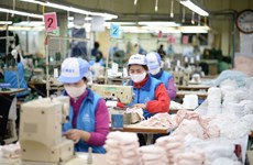 Grupo vietnamita suministra al mercado 38 millones mascaras sanitarias de tela