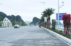 Ruta patrimonial embellecerá mar de Ha Long