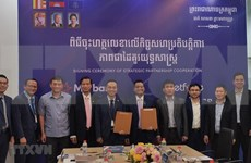 Fortalecen cooperación entre filiales de empresa y banco vietnamitas en Camboya