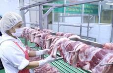Arriban a Vietnam cerca de mil 500 toneladas de carne de cerdo de Rusia