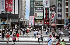 Vietnamita se convierte en la tercera mayor comunidad extranjera en Japón