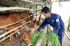 Vietnam por garantizar el bienestar social ante impacto del COVID-19