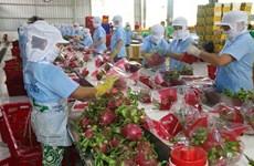 Aumenta superávit comercial de agricultura, silvicultura y acuicultura de Vietnam en primer trimestre