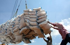 Aumentará Filipinas las importaciones de arroz para asegurar suministro interno