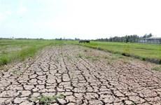 Continúa en abril la intrusión salina en Delta del Mekong de Vietnam