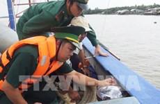 Provincia vietnamita prohíbe faena de barcos pesqueros sin equipo de monitoreo