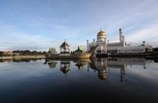 Brunei realiza pruebas gratuitas de coronavirus para trabajadores migrantes