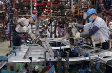 Empresas alemanas confían en recuperación económica de Vietnam