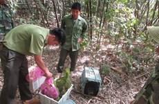Liberan en Vietnam animales salvajes al Parque Nacional Bu Gia Map