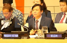 Vietnam llama a garantizar seguridad de civiles malienses