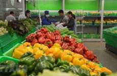 Exportaciones de verduras y frutas de Vietnam alcanzan 836 millones de dólares en primer trimestre