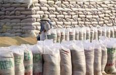 Exportaciones de arroz de Vietnam se limitarán a 400 mil toneladas en abril