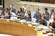 Vietnam finaliza con presteza informe mensual como presidente del Consejo de Seguridad de la ONU