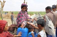 Expresa Vietnam preocupación por crisis humanitaria en Yemen