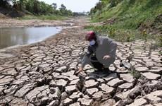 Proponen en Vietnam paquete de ayuda para tratar la salinidad y sequía