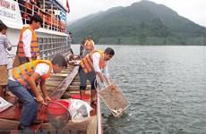 Vietnam proyecta plan para protección y explotación de recursos acuáticos
