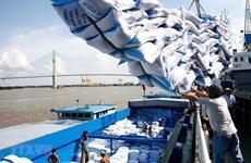 Exigen pesquisar observancia de leyes en la gestión de exportación de arroz vietnamita