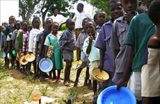 """Llama Vietnam a mayores esfuerzos para superar """"círculo vicioso"""" de conflictos e inseguridad alimentaria"""