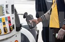 Indonesia: caída de precios del petróleo ejerce presión sobre presupuesto estatal