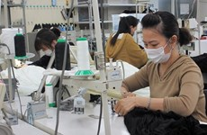 Comparten soluciones para ayudar a empresas vietnamitas a recuperarse en el período post-pandémico