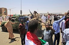 Asiste Vietnam a reunión virtual del Consejo de Seguridad de la ONU sobre Darfur
