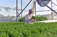 Provincia vietnamita de Bac Ninh registra más de 15 mil empresas privadas