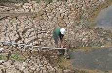 Banco vietnamita respalda a personas afectadas por sequía y salinización