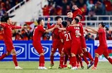 Compañía vietnamita obtiene derechos de transmisión de Copa AFF Suzuki