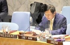 Vietnam saluda el progreso en la situación de seguridad en el noroeste de Siria