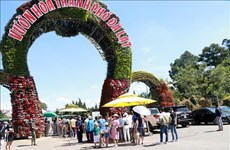 Da Lat recibe a 58 mil visitantes durante feriados en Vietnam