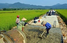 Apoyan a provincia vietnamita de Thanh Hoa en construcción de nueva ruralidad