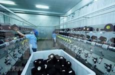 Sector empresarial de Vietnam por evitar futuras interrupciones en cadenas de suministro
