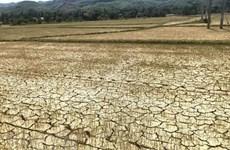 Fenómeno de La Niña aliviará severidad de sequía en Tailandia
