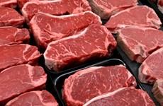 Grupo vietnamita de Hoa Phat importa ganado bovino de Australia