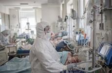 Vietnam sin casos nuevos de COVID-19 este viernes