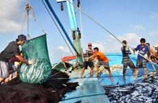 """Vietnam busca levantamiento de """"tarjeta amarilla"""" de la UE al sector pesquero"""