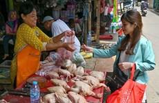 ASEAN Post sugiere medidas para evitar crisis alimentaria causada por el COVID-19