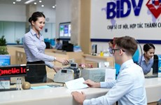 Sector bancario de provincia vietnamita extiende apoyo a clientes