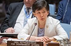 Participa Vietnam en diálogo de ONU sobre armas químicas en Siria