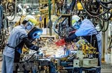 Vietnam por fortalecer el desarrollo de industrias procesadora y manufacturera