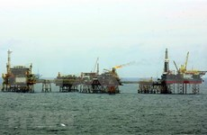 Instalan plataforma petrolífera BK- 21 en yacimiento vietnamita de Bach Ho