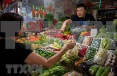 Exportadores vietnamitas de verduras y frutas por ampliar cuota en Tailandia