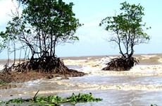 Agencia alemana apoya a provincia vietnamita en resistencia a inundaciones
