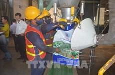 Ponen en marcha la mayor planta de Vietnam para la conversión de residuos en fertilizantes